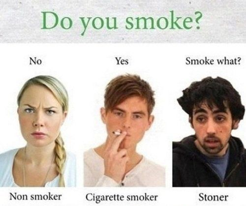 I'm a stoner can't tell you how many times I've answered with that lmao
