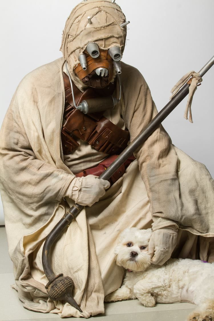 Star Wars Cosplayers Pose With Adoptable Animals From The Ottawa