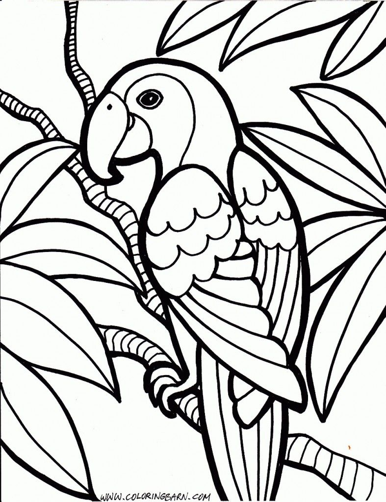 Bird Coloring Pages | Design pattern etc | Pinterest | Ausmalen ...