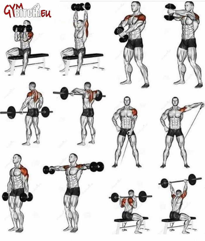 Weight Lifting Gym Fitness Workout Exercise Training Body: Best Shoulder Fitness Workouts & Exercises
