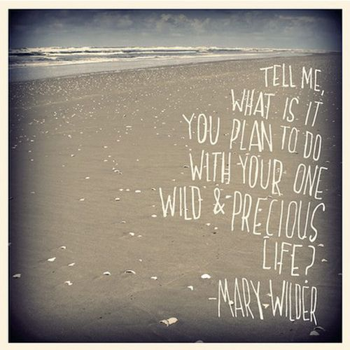 Mary Wilder...another all time favorite quote..