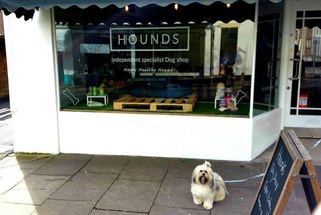 Hounds Newcastle Under Lyme Dog Shop Dog Friends
