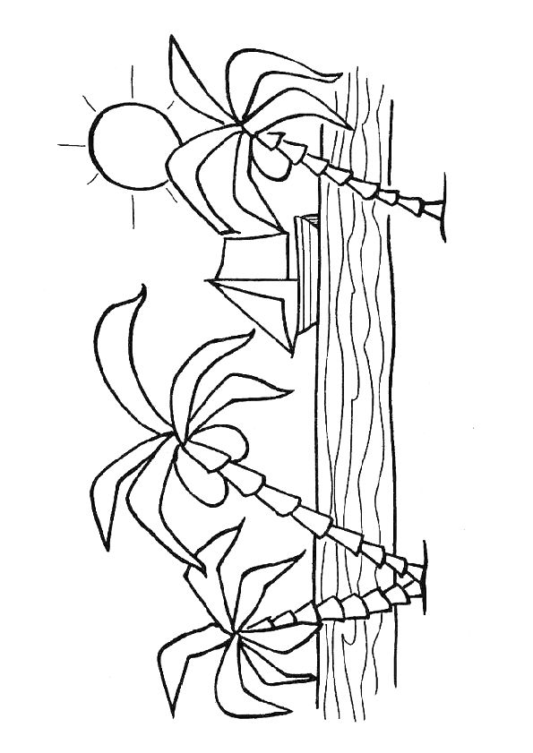 afbeeldingsresultaat voor palmboom kleurplaat