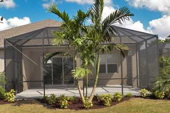 Adonidia Palm in front of a pool cage at a home in ...