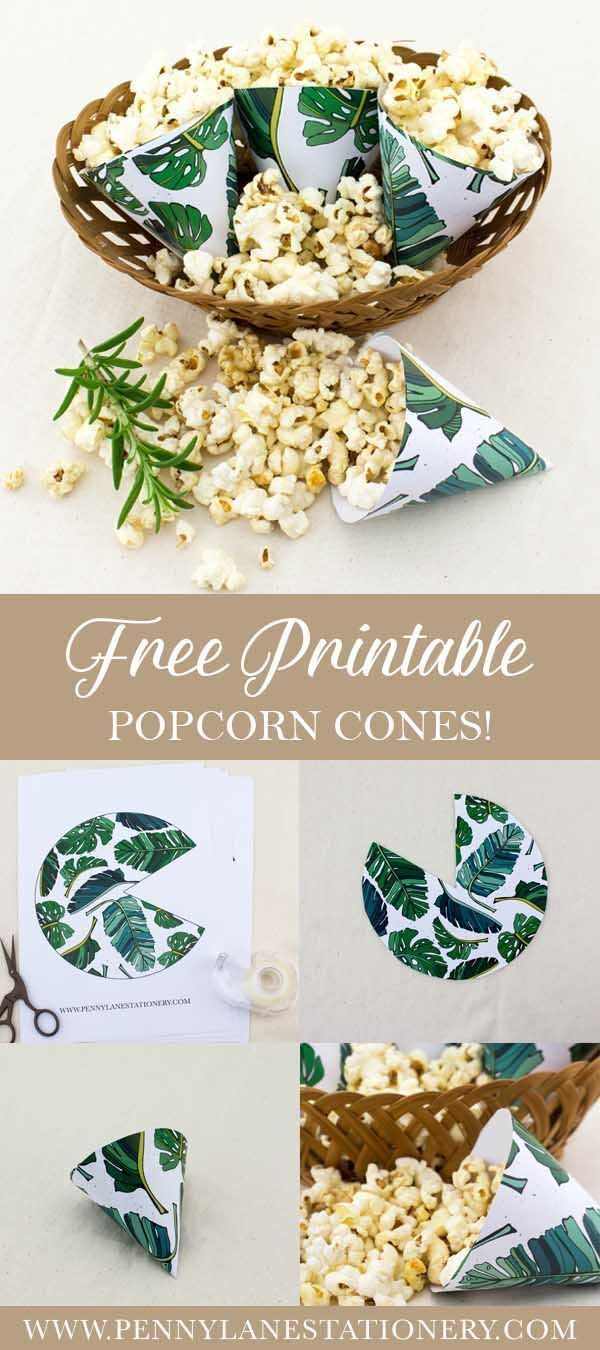Free Printable Safari Popcorn cones!