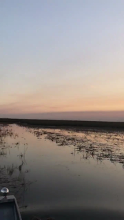 We had three Red Eye tours and a Gator Nights adventure and they were awesome! There were birds everywhere, gators galore and the most magical sunset! To book yours visit: https://www.evergladestours.com/    VISIT FLORIDA  Visit Lauderdale https://panel.socialpilot.co/site/video/2zX8zL1zenzt41N2zJ6zJ8zC5zmnzf