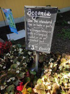 Round Rock Garden Center Http://lgrmag.com/inspirationbook/