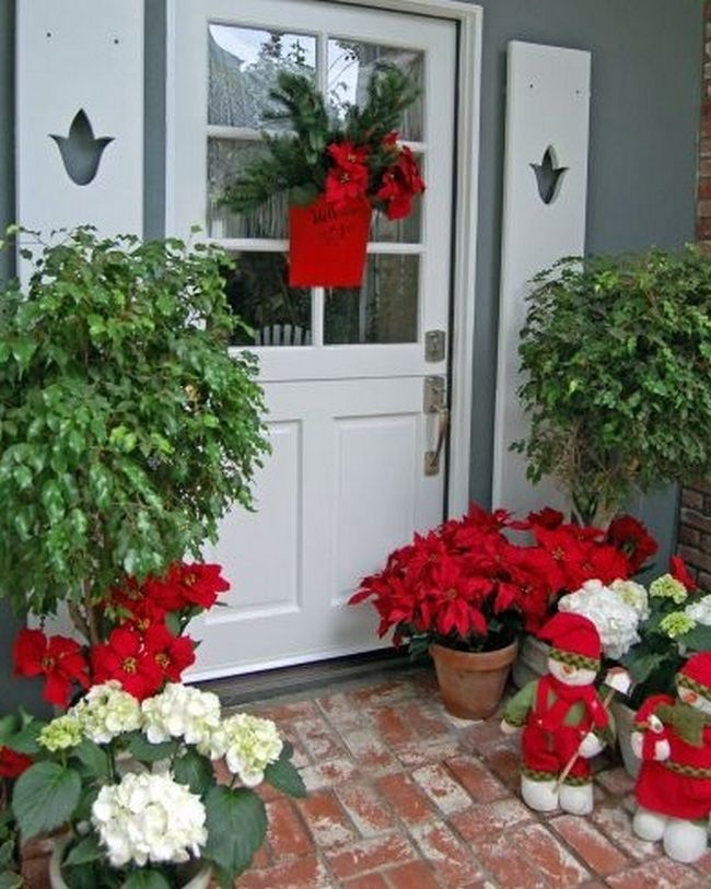 Good 40+ Poinsettia Plant Decor Front Porches_10 Ideas