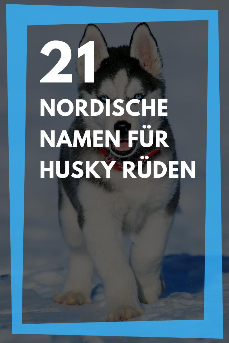21 Hundenamen Fur Husky Ruden Nordische Namen Mit Bedeutung