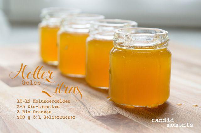 Holler-Zitrus-Gelee-Zutaten (c) www.candid-moments.at