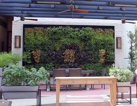 Compilation Of Living Walls In The LA Area · Los Angeles ...