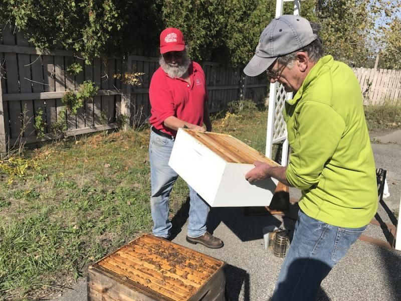 Ohio Beekeepers Find Different Ways To Get Hives Through ...