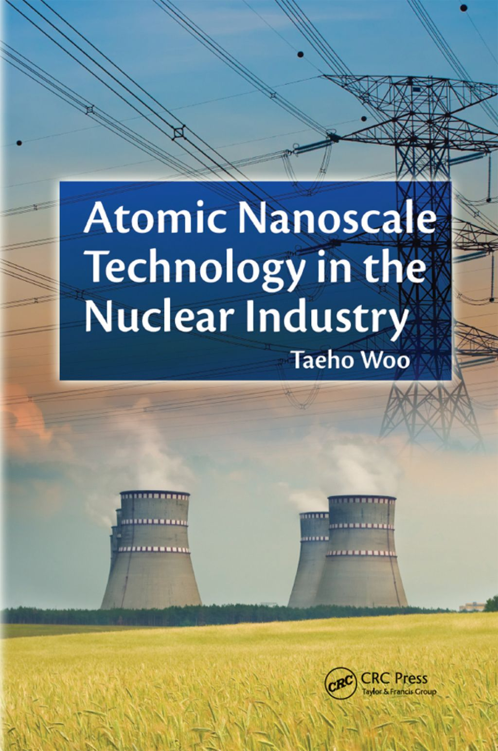 Atomic Nanoscale Technology In The Nuclear Industry Ebook Rental