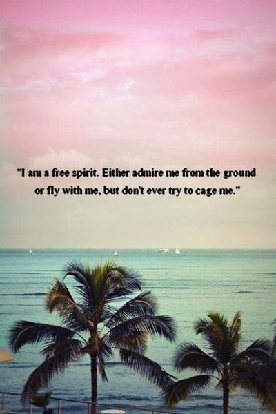 Im A Free Spirit Either Admire Me From The Ground Or Fly With Me