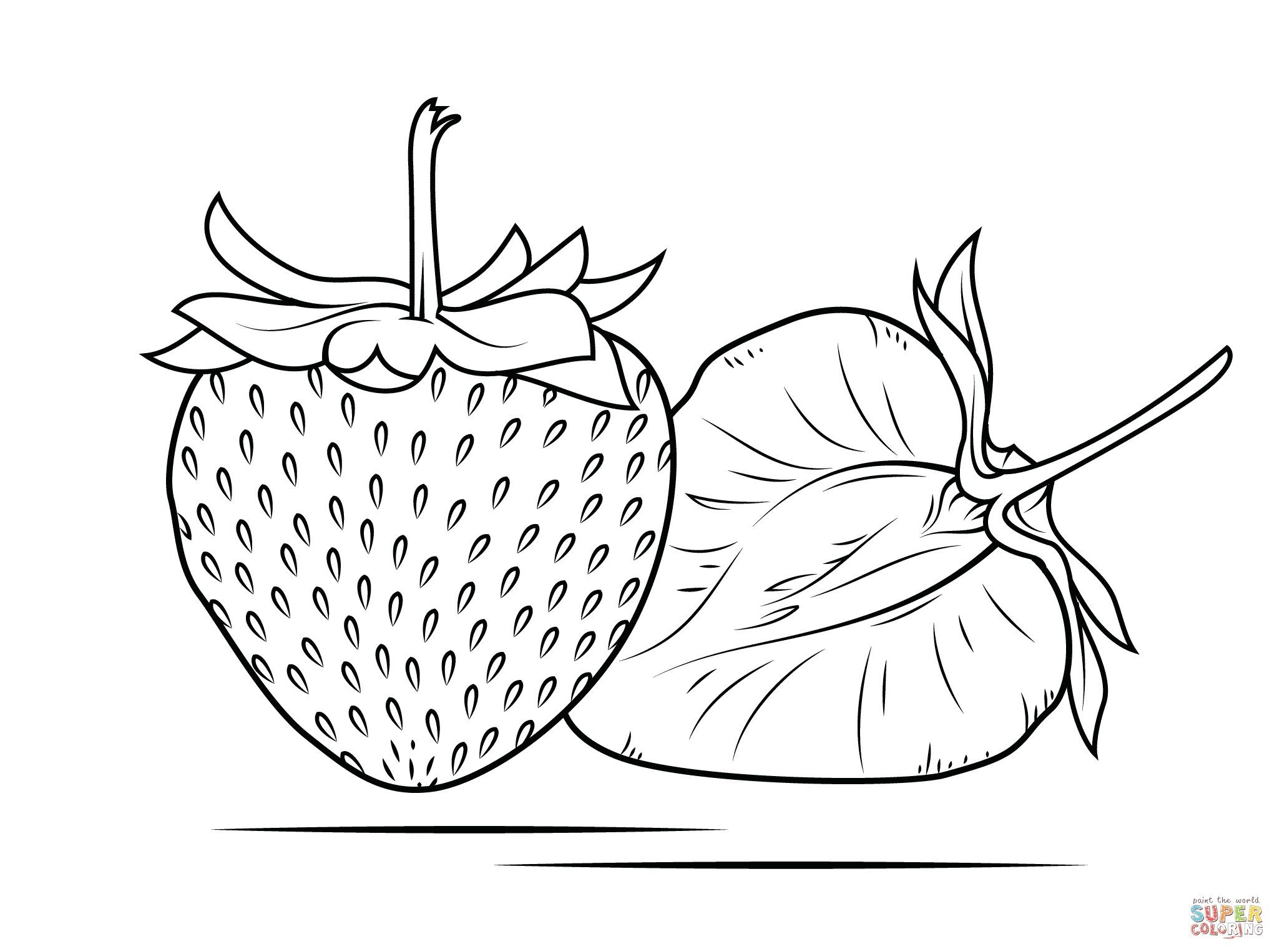 24 Pretty Photo Of Strawberry Coloring Page Davemelillo Com Free Coloring Pages Animal Coloring Pages Mandala Coloring Pages