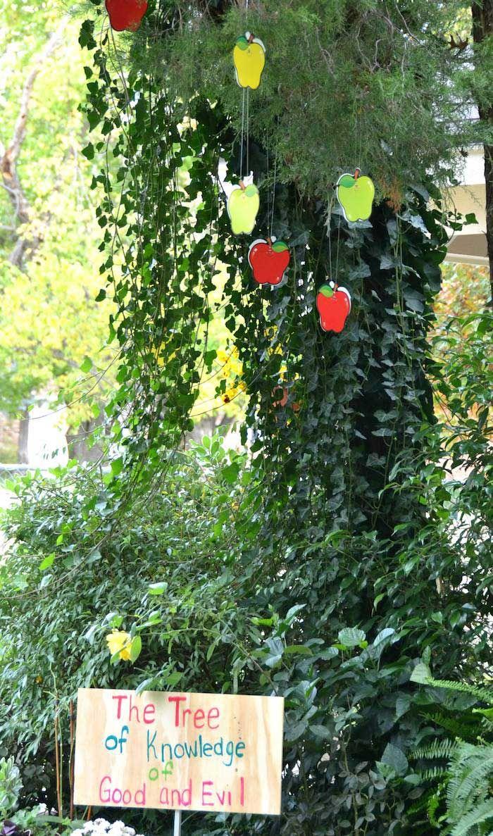 Garden Of Eden Themed Birthday Party  Birthday party decorations