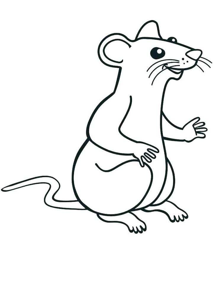 Rat Coloring Pages Free Rat Has A Larger Size Than Mice Like A Mole Rat With A Long Hairy Tail Animal Coloring Pages Coloring Pages Coloring Pages To Print