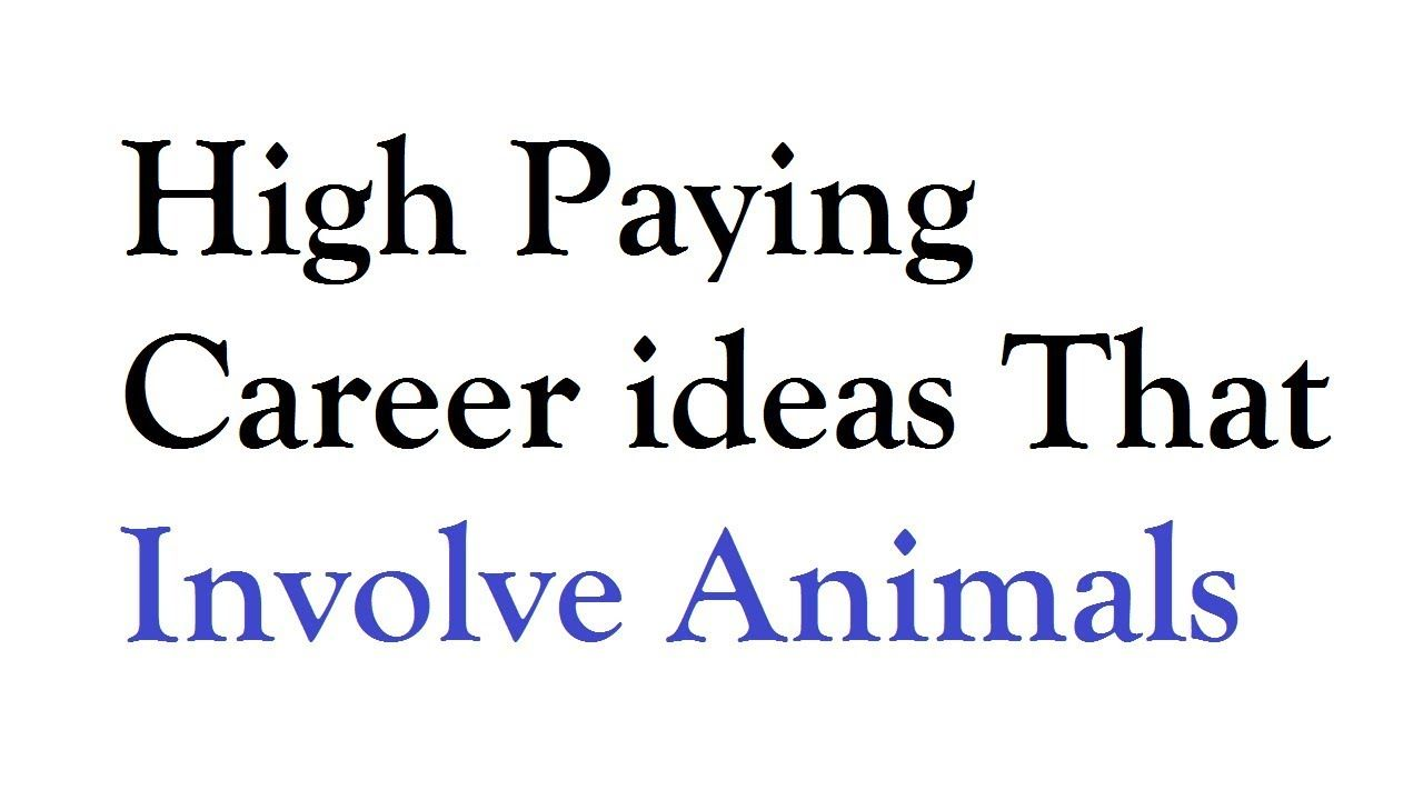 Top 50 High Paying Career ideas That Involve Animals