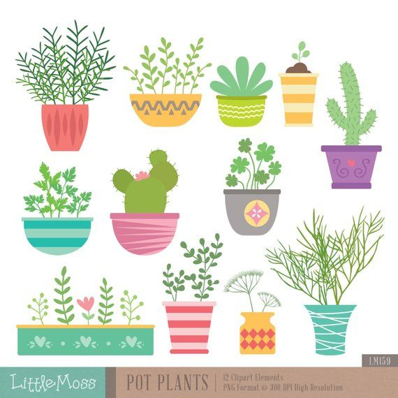 Potted Plant Pot Png Transparent Clipart Image And Psd File For Free Download Photoshop Flowers Plants Potted Trees