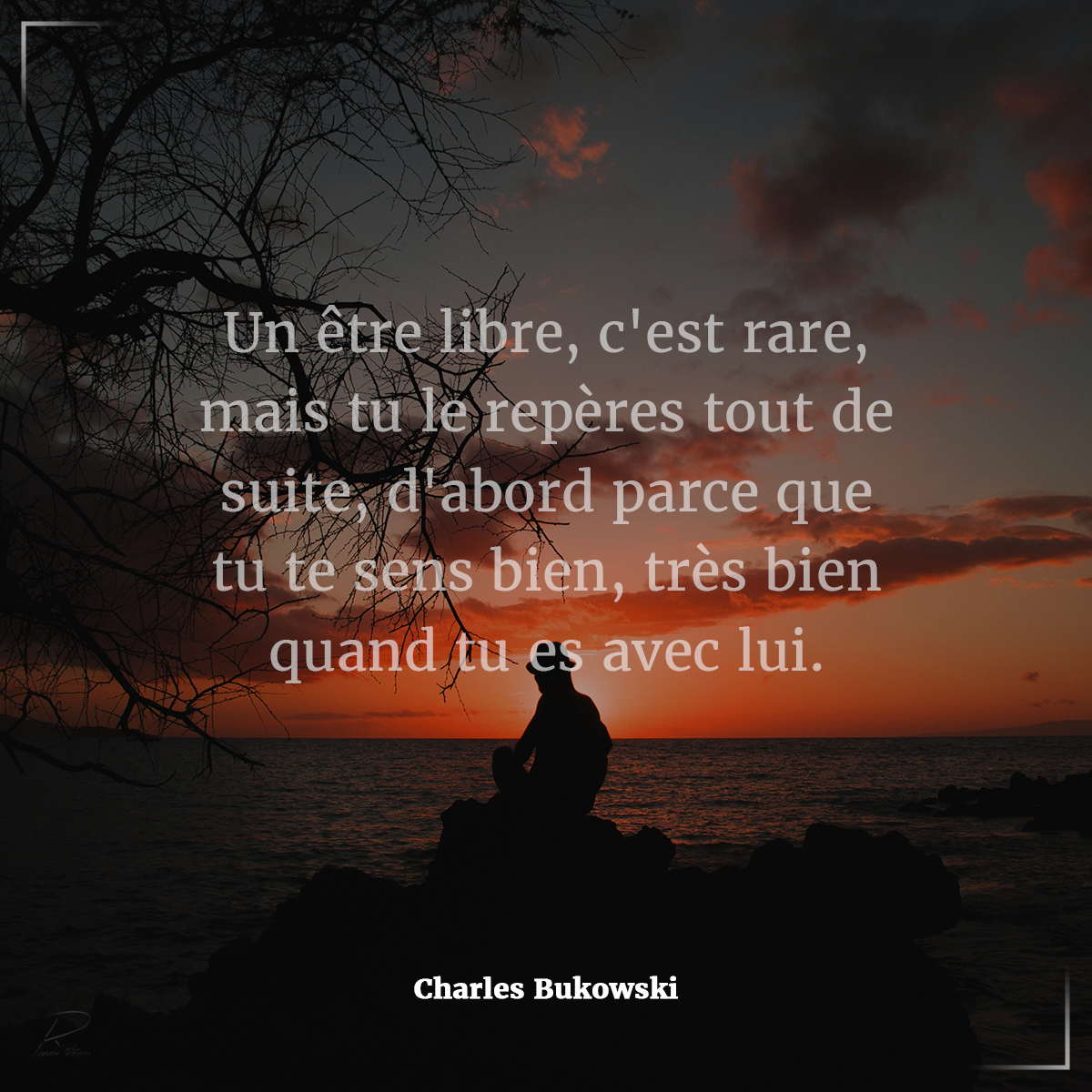 Citation Du Jour Attitude Pensee Positive Un Etre Libre C Est Rare Mais Tu Le Reperes Tout De Suite D Abord Par Father Quotes Movie Posters Poster