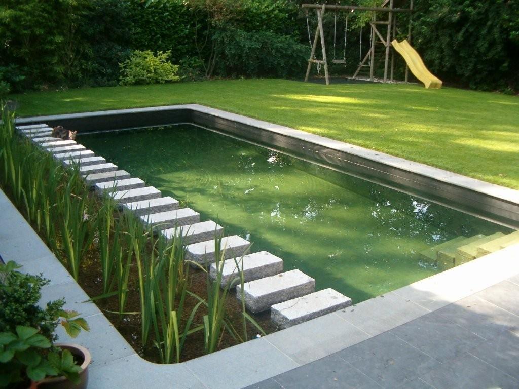 Zwemvijver met moeraszone langszij tuin for Zwembad achtertuin