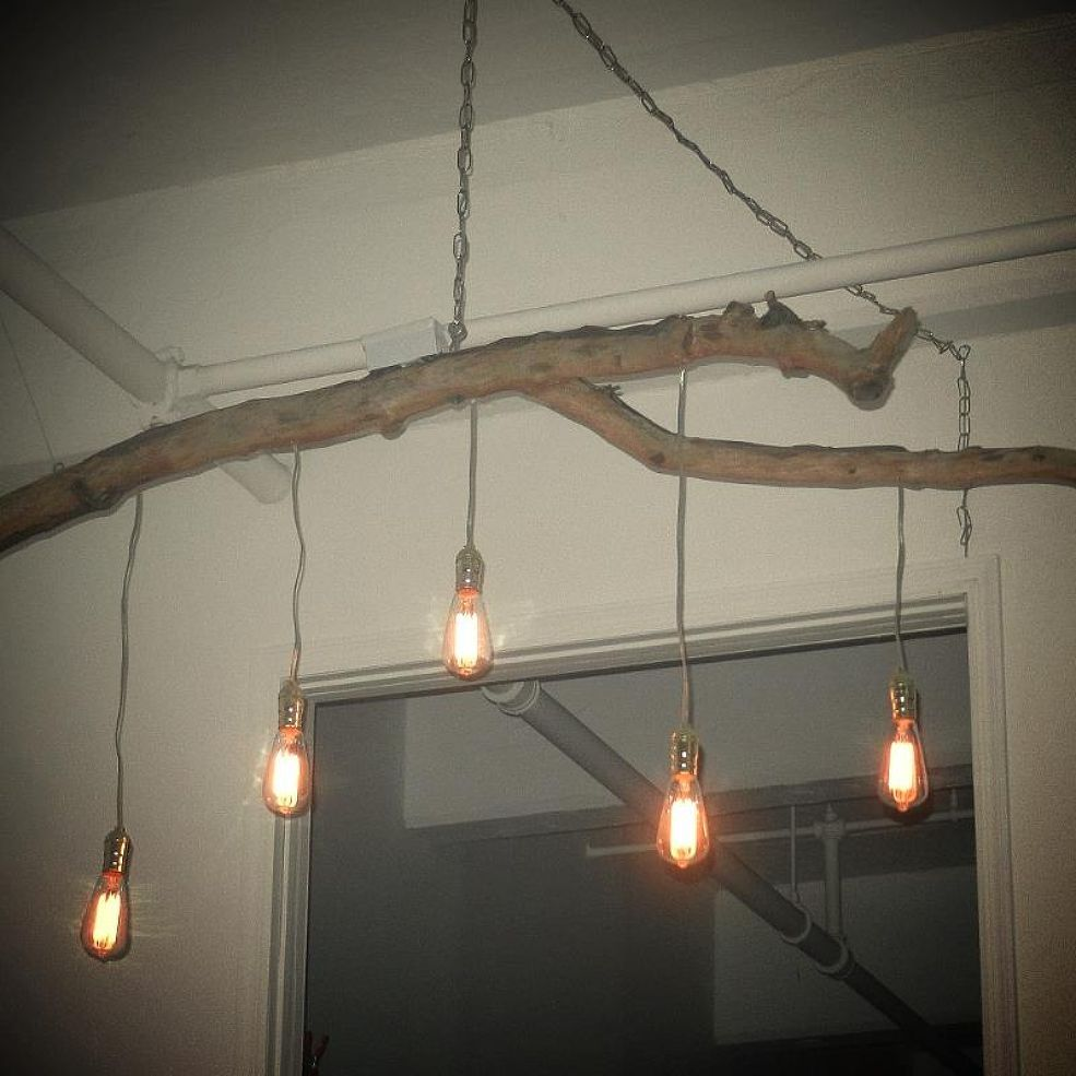 Unique Chandelier Crafted From A Fallen Branch And Edison Style Lights