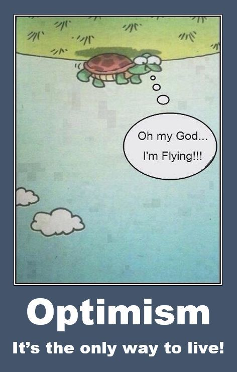 Optimism . . . It's the only way to live! #funny (With ...