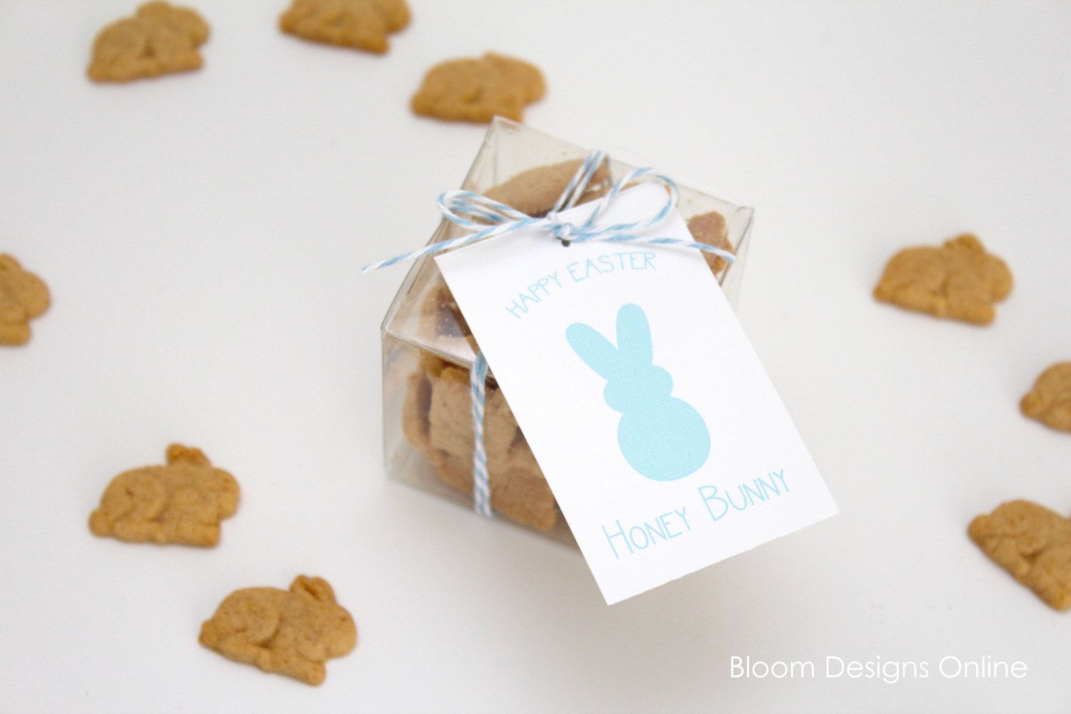 PARTY FAVOR PLASTIC BOXES   Baby Shower Decoration Inspirations ...