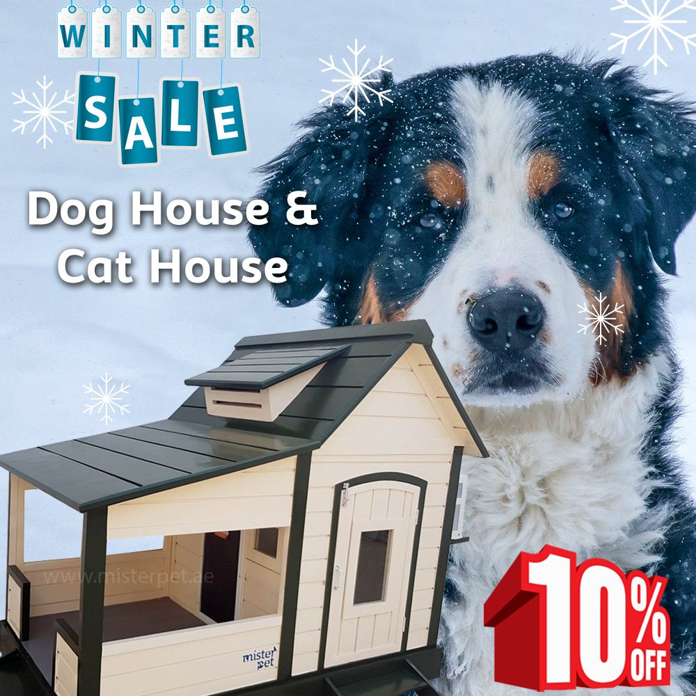 Wintersale Dog House Cat House Shop Online Or