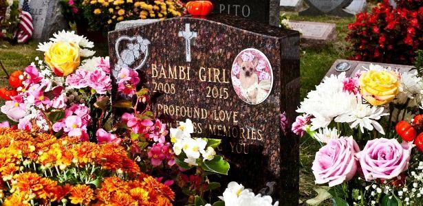 Nova York permite donos serem enterrados com seus animais de estimação