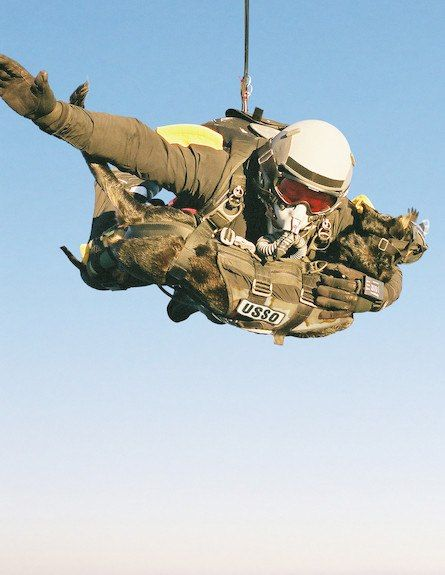 Halo Jump With A Dog Beast Special Ops Pinterest Military