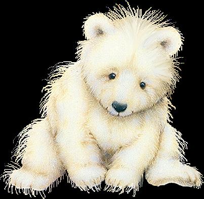 Blog De L Ile De Kahlan Bear Sketch Bear Paintings Bear Art