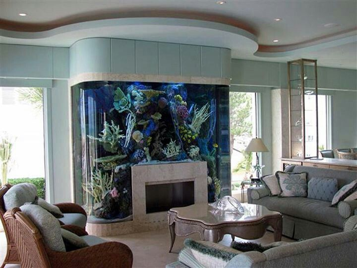 Fireplace aquarium. Like, what? I think is this awesome, but I worry about the hear. Surely they'd have found a way to insulate the tank so the fire doesn't effect the water?