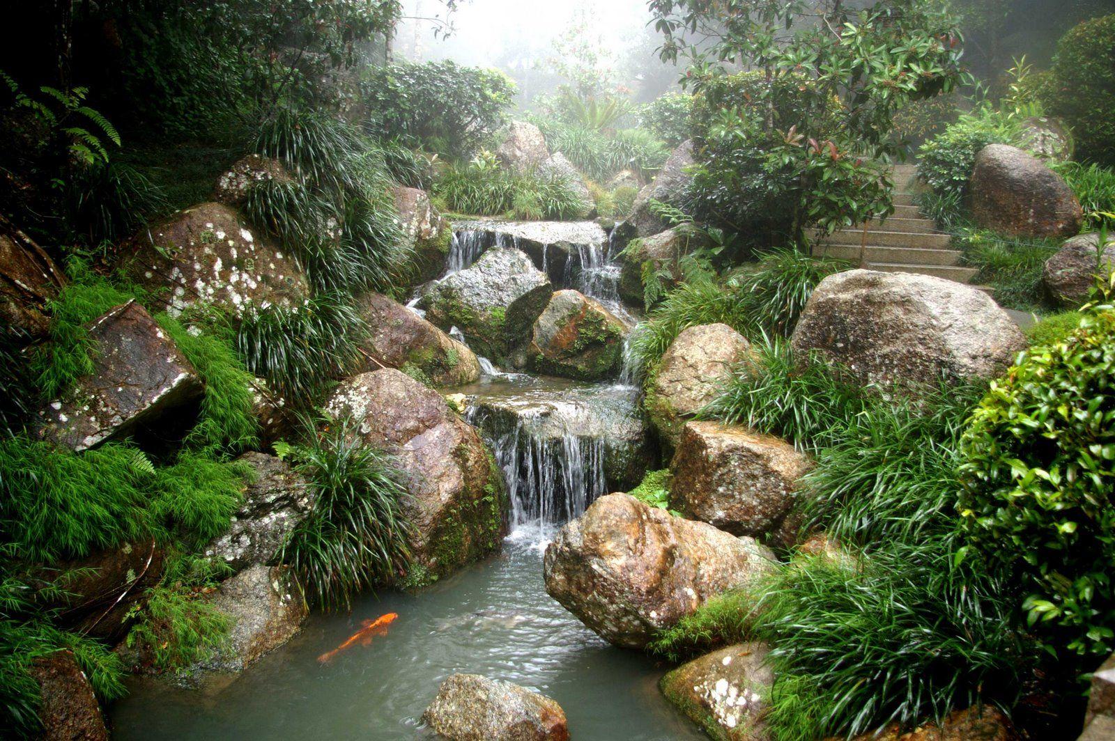 Delightful Zen Garden