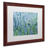 """Found it at Wayfair - """"After the Rain"""" by Beata Czyzowska Young Matted Framed Photographic Print"""