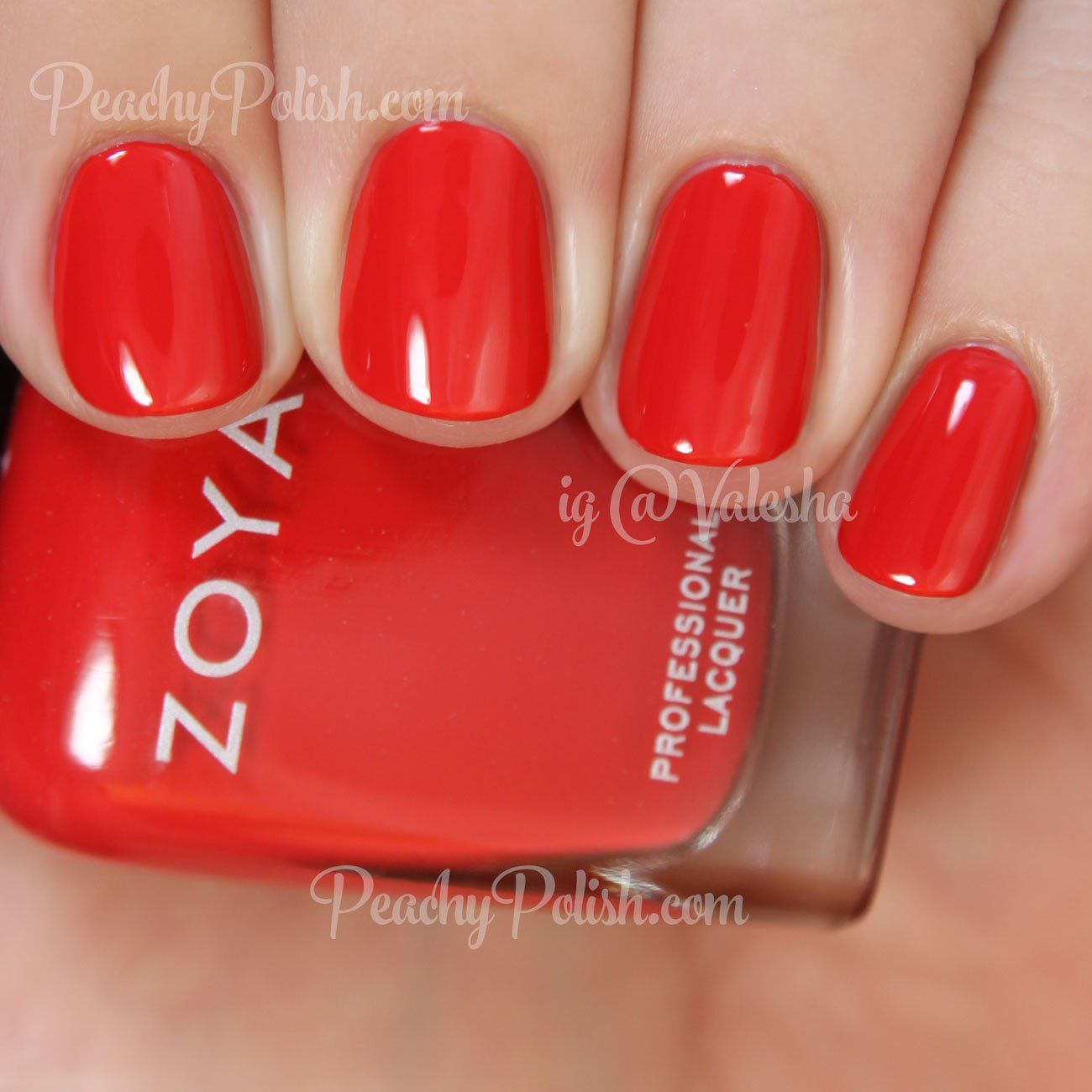 Zoya Demetria | Summer 2015 Island Fun Collection | Peachy Polish ...