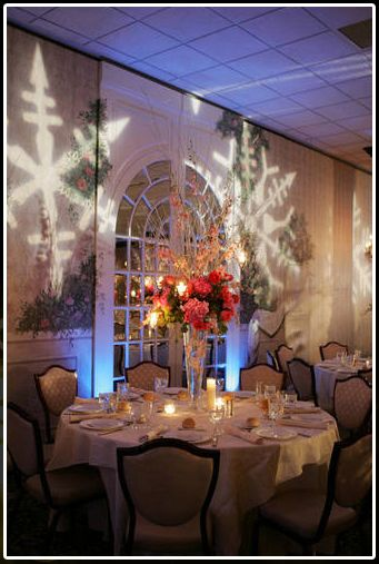 LED wall projected snow flakes http://www.savethedateevents.com/wp-content/uploads/2010/10/colorado-wedding-lighting-4.jpg