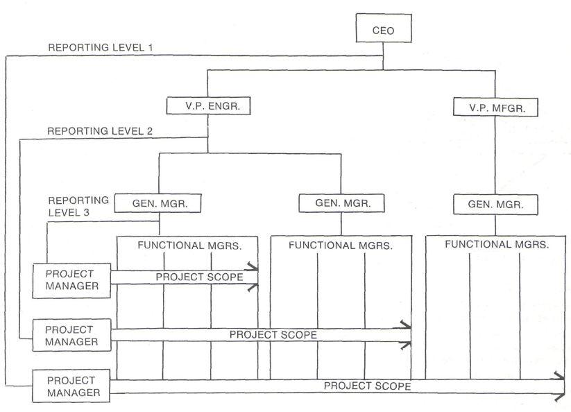 Pmi The Matrix Organization 065c2d4a Resumesample Resumefor Organizational Chart Organization Business Education
