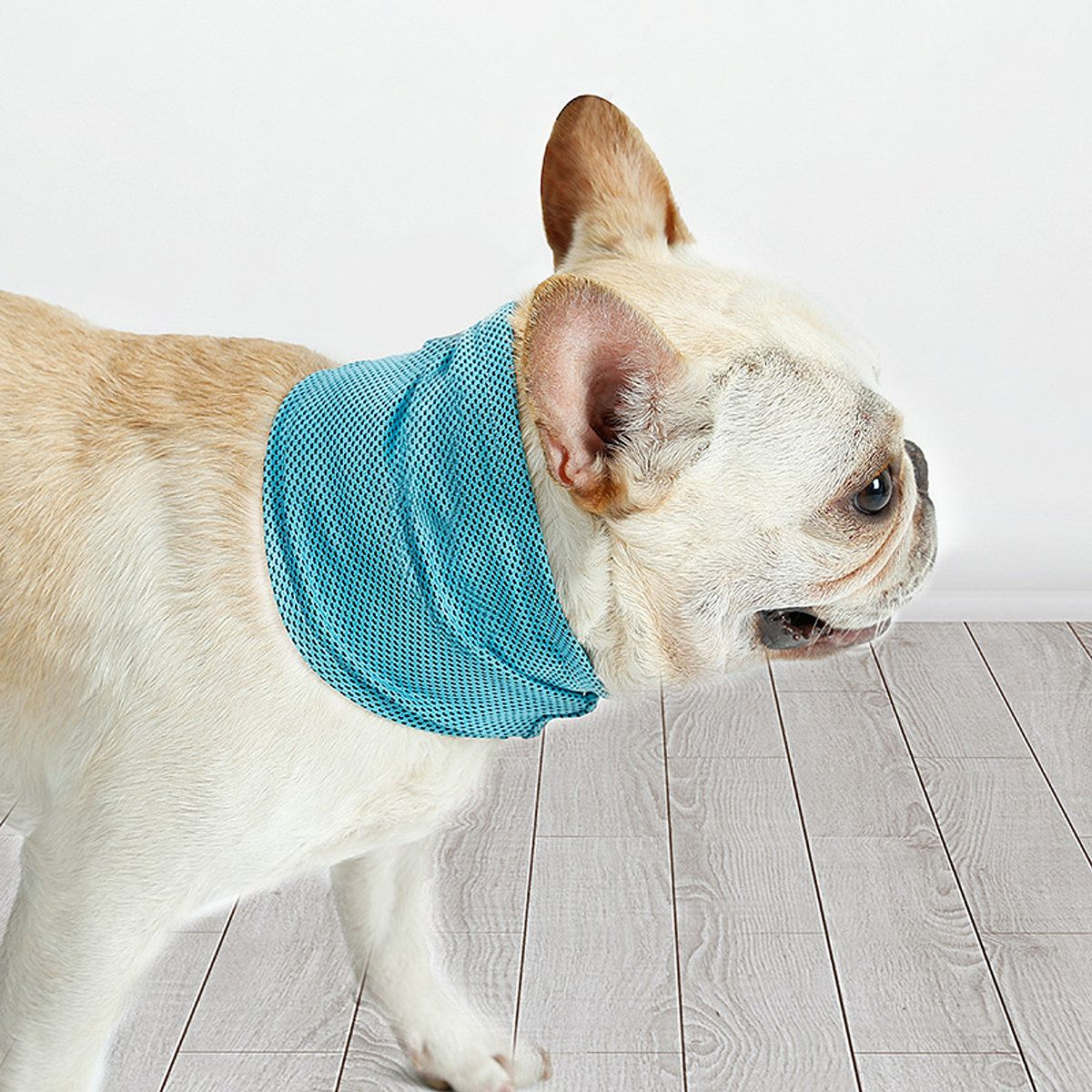 Pet Dog Ice Scarf Summer Ice Collar Ice Bandana for Pet Dogs SML Size