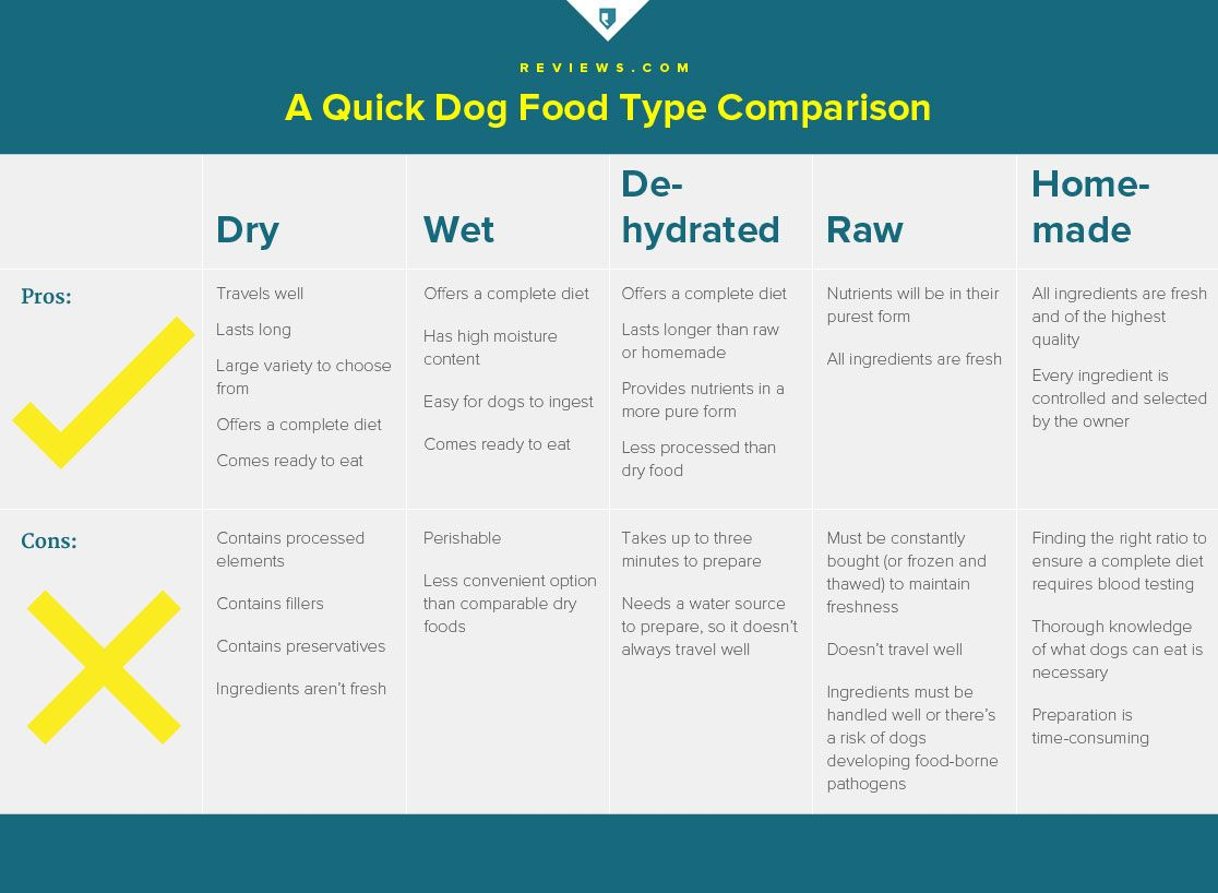 Best Rated Dog Food