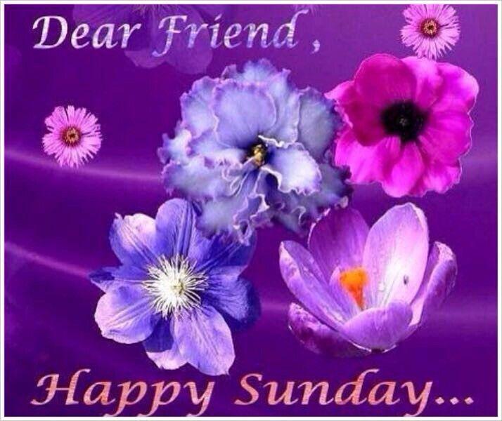 Friendship.  Sunday