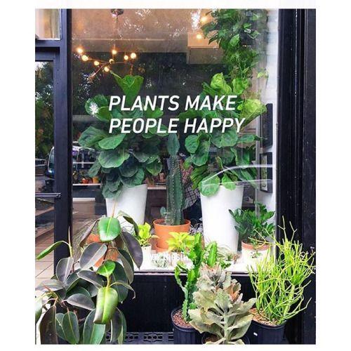 Plants Make People Happy!