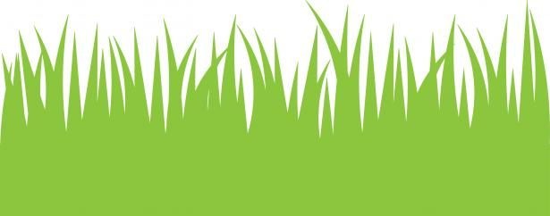 Green Grass Clipart Free Stock Photo Public Domain Pictures Grass Clipart Grass Pattern Lawn Care Business Cards