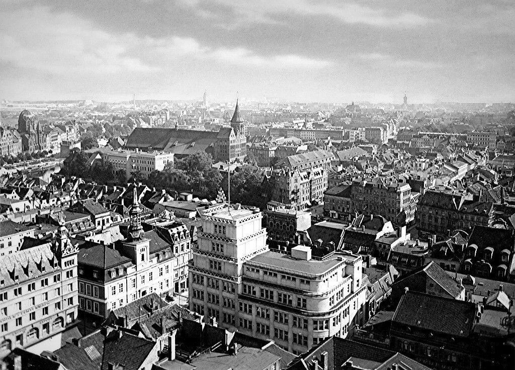старый кенигсберг фото города конструкциях висячих мостов