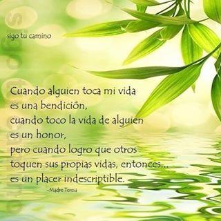 #bendición #vida #apoyo #ayuda #namaste #conciencia #sabiduría #madreteresadecalcuta #empatía #espiritual #bondad #nobleza