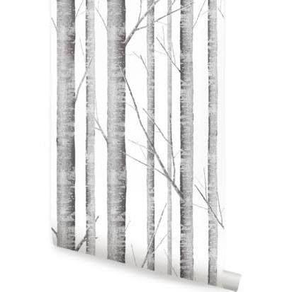 Accentuwall W9000 Birch Tree Wallpaper Peel And Stick Birch