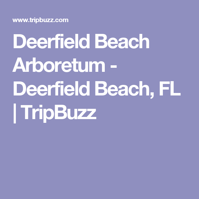 things to do deerfield beach fl