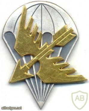 FINLAND Parachutist beret badge