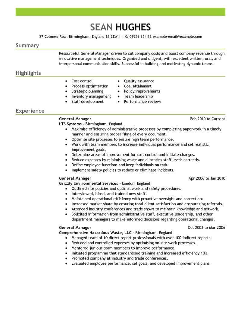 Resume Examples For Managers Resume Summary Examples Resume