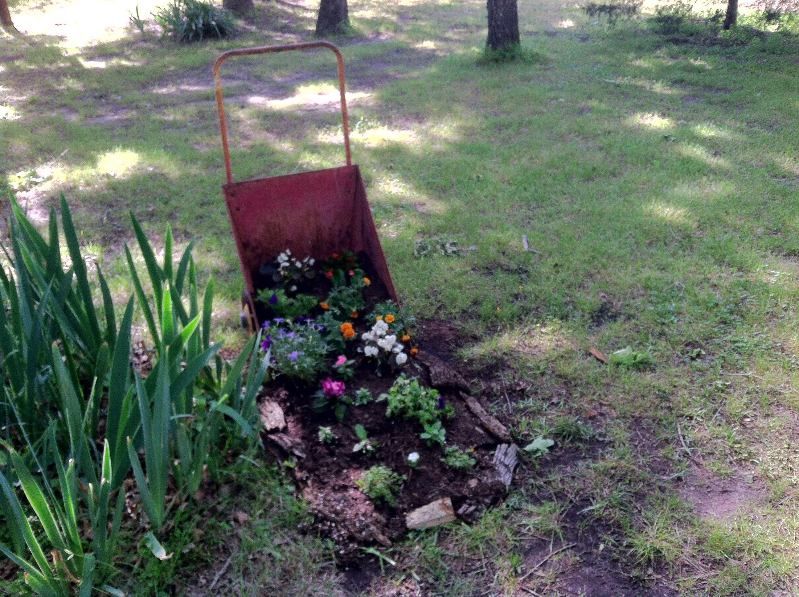 Park Art My WordPress Blog_Quality Tree Service Of West Michigan
